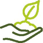 Уход за растениями в подарок