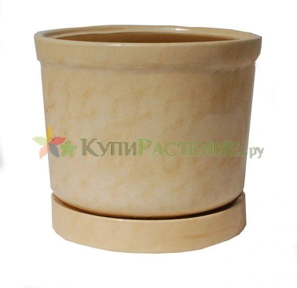 Керамический горшок цилиндрической формы. biege