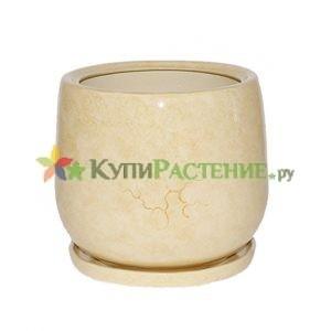 keramicheskij-gorshok-bezhevyj-CHasha