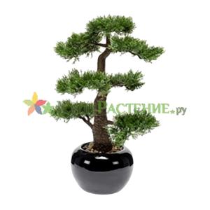 Искусственный бонсай (bonsai)