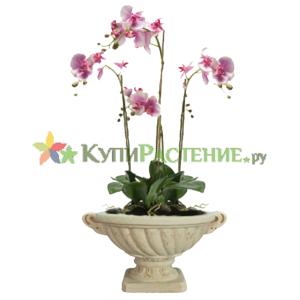 Искусственная орхидея в керамическом вазоне