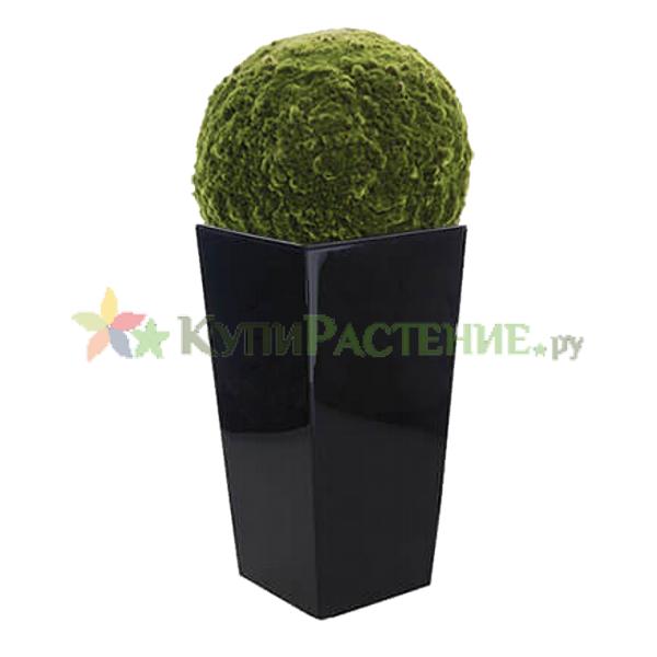 Шар из искусственного мха в пластиковом кашпо